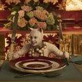 A Macskák-film előzetese legvadabb (rém)álmainkon is túltesz
