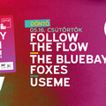 A Follow the Flow, a The Bluebay Foxes és a USEME a Nagy-Szín-Pad! döntőjében