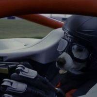 Forma-1-es kutyapilótával dobja fel a hétvégénket a Chemical Brothers