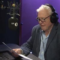 Áradnak az Adele-mémek - most David Attenborough narrálta a Hello elejét