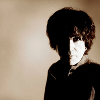 Peter Perrett: How The West Was Won (lemezkritika)