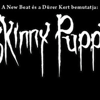 Ma este Skinny Puppy a Dürer Kertben!