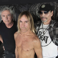 Iggy & The Stooges: Ready To Die (albumhallgató)