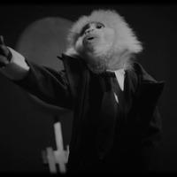 Szerelmi bánatát énekli David Lynch aranytorkú majma