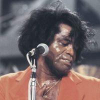 Harminc napig ingyen streamelhetjük Nina Simone, James Brown és Marvin Gaye koncertjeit