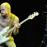 Mesés hülyeség vagy mesteri trollkodás? A Red Hot Chili tagjaival Metallica-képeket írattak alá