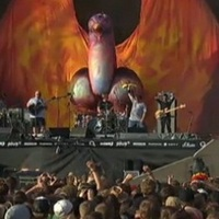 A Tenacious D (meg a Hives és a Metallica) koncertjének élő közvetítése!