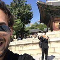 Könnyes szemű főszervező és a szállásról szalajtott pálinka – A Papaver Cousins Koreában