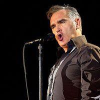 Lemezen is megjelenik Morrissey Lou Reed-feldolgozása