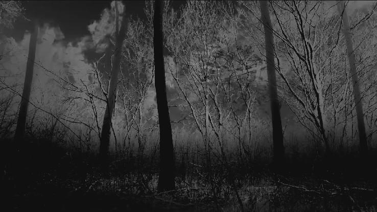 lichter_peter_horvath_adam_marton_darkness.jpg