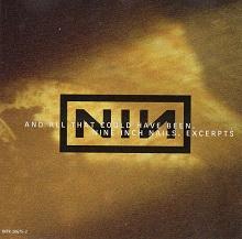 nine_inch_nails_live.jpg