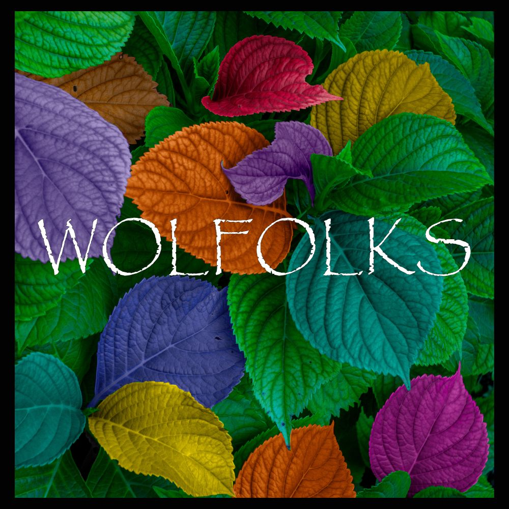 wolfolks-ep-cover-under-10mb-3000px.jpg