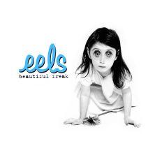 08_eels.jpg