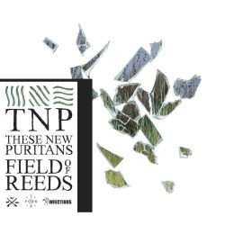 These-New-Puritans-Field-of-Reeds.jpg