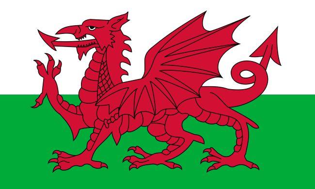flag_of_wales_2_svg.jpg