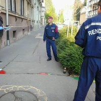 A Fidesz megvédi a kátyúkat is