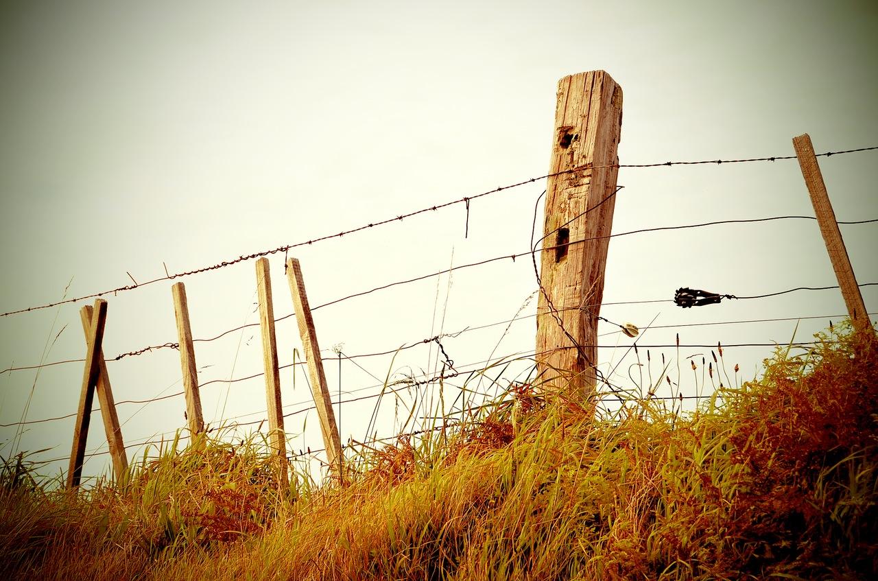 grass-fence-border-property.jpg