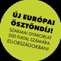 Még két hétig lehet jelentkezni a Magyar Közigazgatási Ösztöndíjra