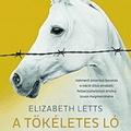 Letts: A tökéletes ló