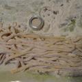 Makaróni tészta készítése házilag
