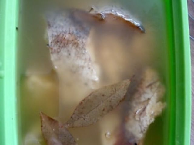 Fehérboros olajoshal
