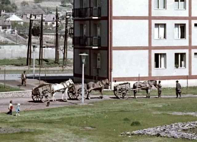 06_kordelyos_kocsik_1960.jpg