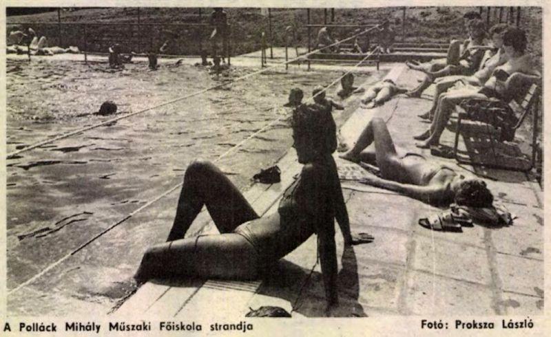 1988_a_pollack_mihaly_muszaki_---_dunantulinaplo.jpg