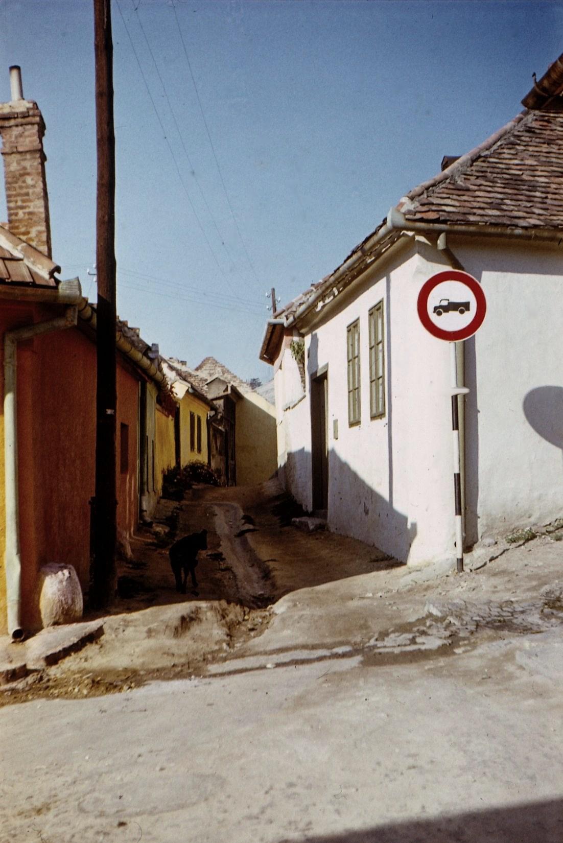 """Zidina és egyéb """"környékek"""""""