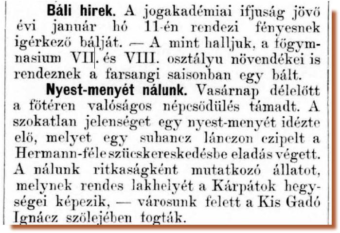 pecsi_lapok_1881_deczember_22-en_cikk.jpg