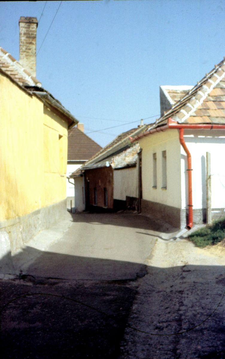 tettyei_sikator_zidina_kornyek_1970-s_evek_diafilm_0001.jpg