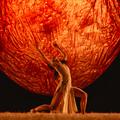Havasi koncert, kortárs balett és egy elragadó sorozat