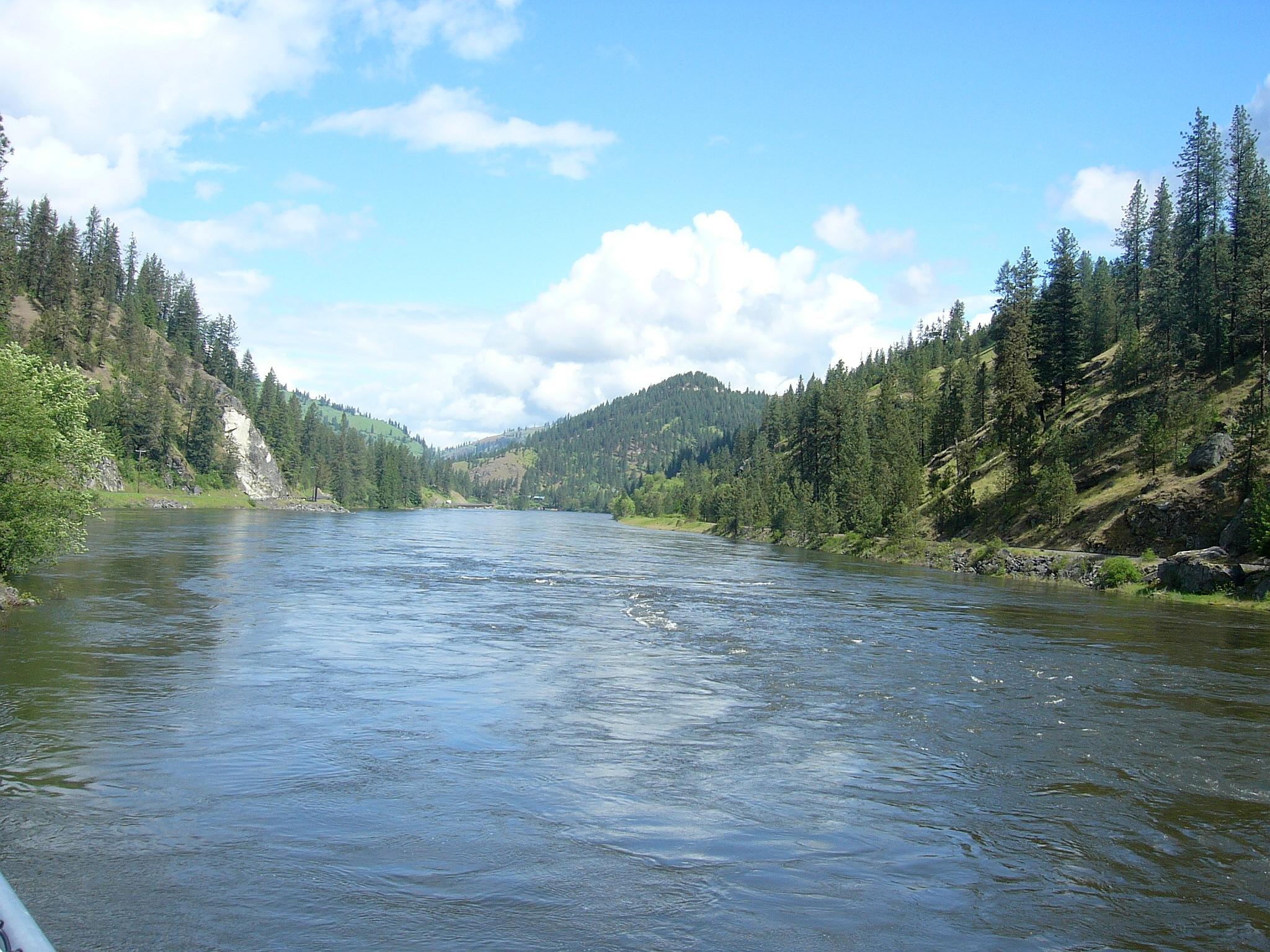 1_229_clearwater_river.jpg