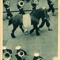 A tengerészló nyugdíjba vonul - 1937 június 23. Képes Pesti Hírlap