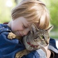 Állatterápia - négylábú gyógyítók