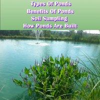 |FREE| Pond Building 101-Types & Benefits Of Ponds To How They Are Built. linea adapta Codigo Gamers Trade SIlvio standard serie