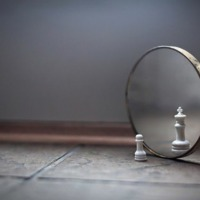 Tükrök és találkozások