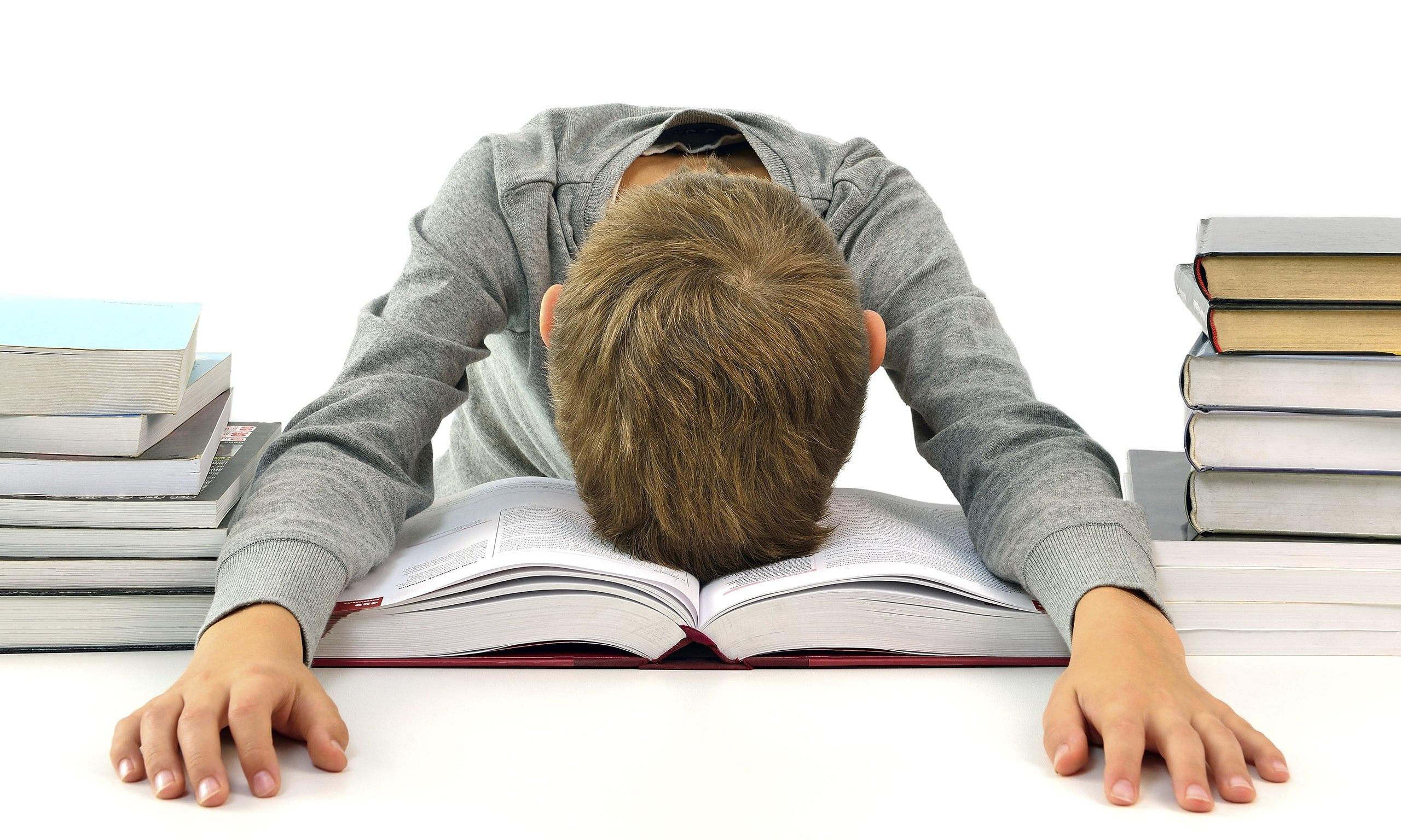 Boy-with-books-014.jpg