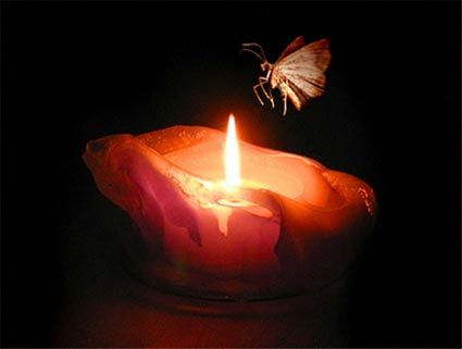 moth-to-solar-flame.jpg