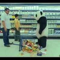 Ez a panda nem viccel