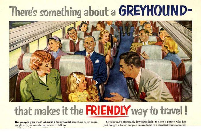 greyhound-pop.jpg