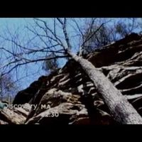 [ReZe] Discovery Channel - A túlélés törvényei - Bear Grylls Promo Ajánló 2010