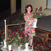A legtöbb szál rózsa ajándékba