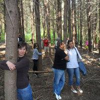 Háromszázan fát öleltek