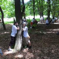 Szeressük a fákat: Tömeges faölelés
