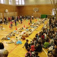 Ismét mackó-rekord a Medve utcában