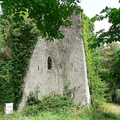 Észak-Írország nemzeti parkjai - Castle Caldwell Nemzeti Park