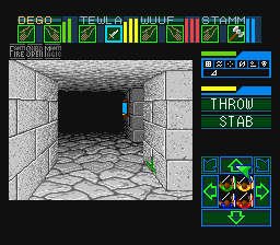 dungeonmastersnes.png