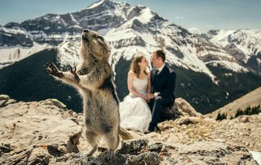 10 véletlen esküvői fotó, amin még az unokák is nevetni fognak