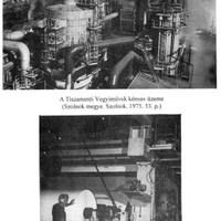 Jelentés a Tiszamenti Vegyiművek helyzetéről (Részlet) - 1964