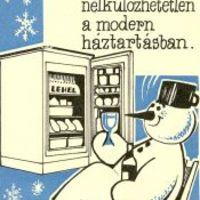 Tájékoztató a jászberényi Lehel Hűtőgépgyár tevékenységéről - 1980